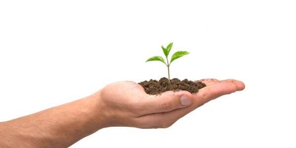 compost plant hoveniers